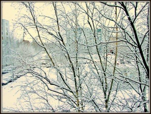 Зимнее утро за окном