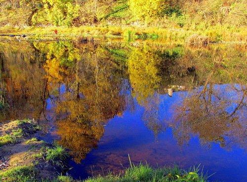 Осень отразилась в реке
