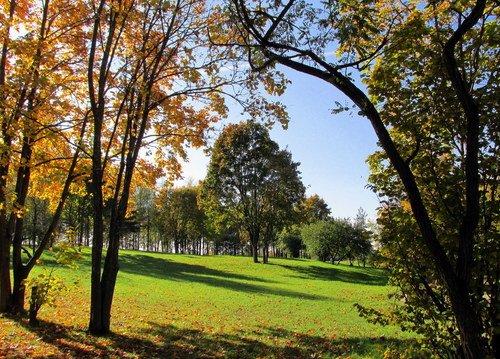 Осенью в парке