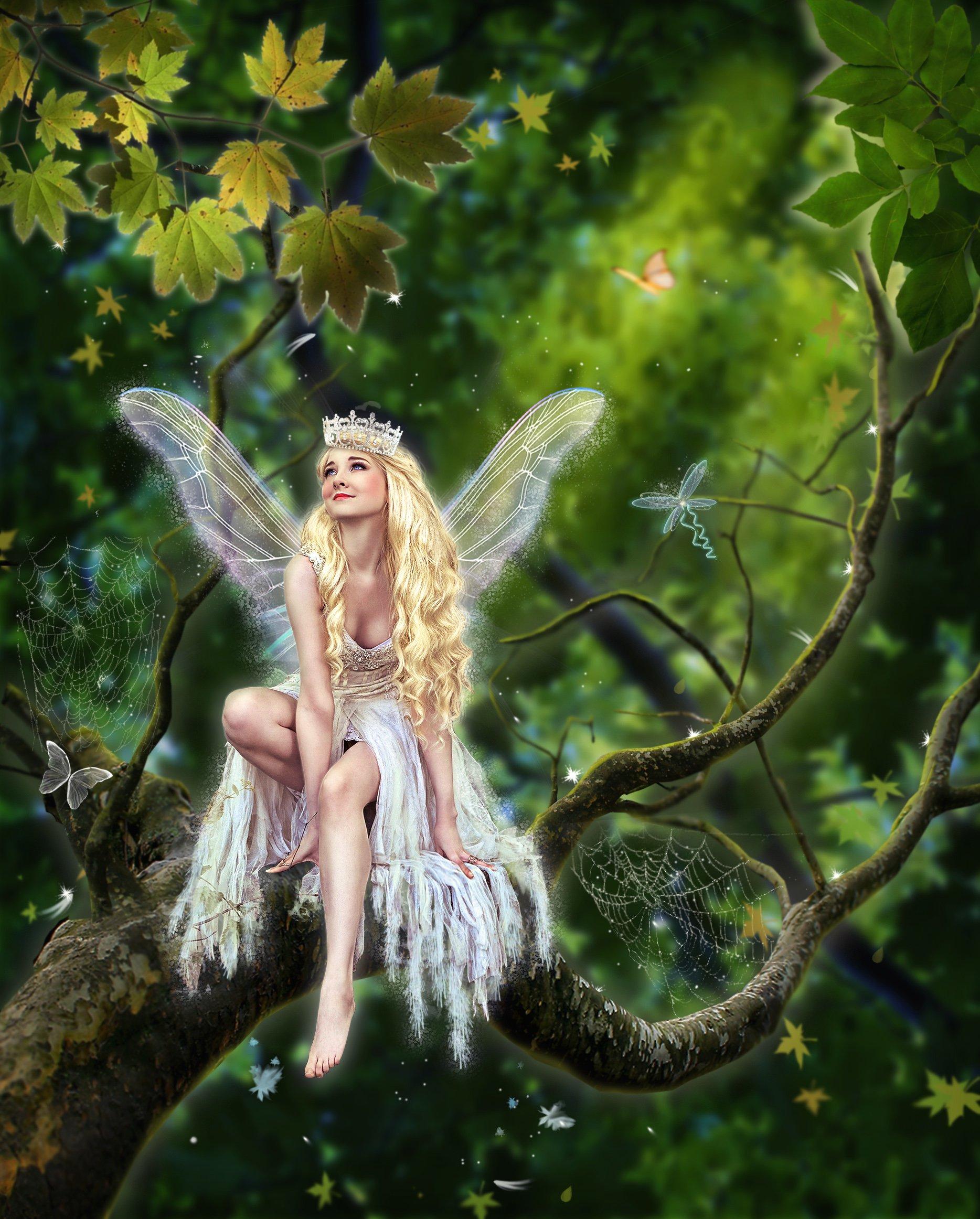 Картинки с лесными феями